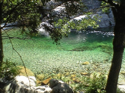 rivière de la restonica Corte.jpg